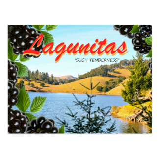 "Lagunitas, ""Such Tenderness"" (Hass, take 2) Postcard"