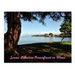 Lahaina Maui Scenic Postcard