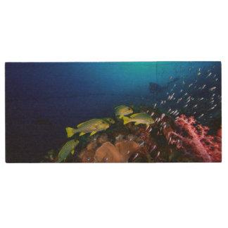 Laja Ampat Underwater 3 Wood USB Flash Drive