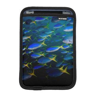 Laja Ampat Underwater 5 iPad Mini Sleeve