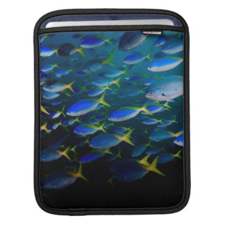 Laja Ampat Underwater 5 Sleeve For iPads