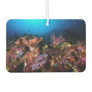 Laja Ampat Underwater Car Air Freshener