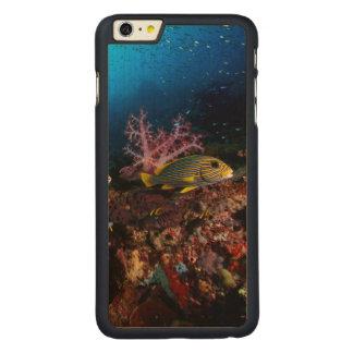 Laja Ampat Underwater Carved® Maple iPhone 6 Plus Case