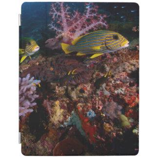 Laja Ampat Underwater iPad Cover