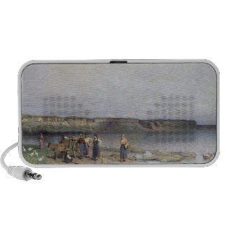Lake Balaton with the Shore of Akarattya, 1885 Travelling Speaker