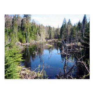 Lake Boyer Postcard