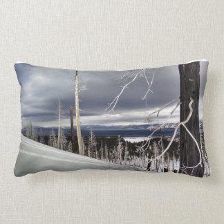 Lake Cabin pillow
