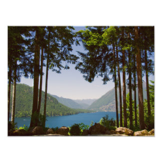 Lake Cushman Summer Print Photograph