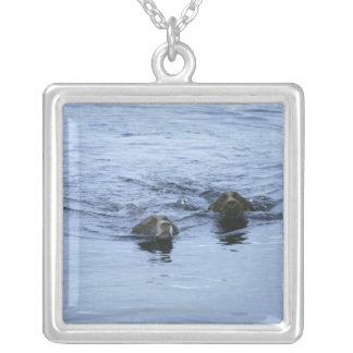 lake district cumbria england silver plated necklace