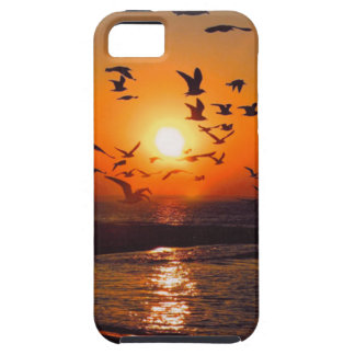 Lake Erie Sunset Case For The iPhone 5