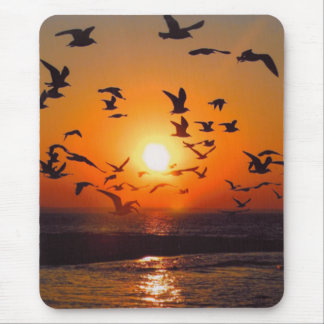 Lake Erie Sunset Mouse Mat