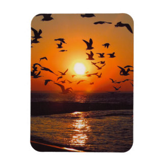 Lake Erie Sunset Rectangular Photo Magnet