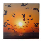 Lake Erie Sunset Small Square Tile