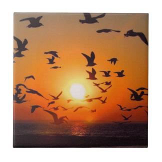 Lake Erie Sunset Tile