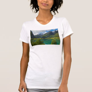 Lake Floen scenic, Norway T-Shirt