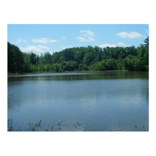 Lake Greenwood Cove Postcard