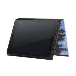 Lake in Ontario iPad Air Case