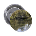Lake in the Woods Pins