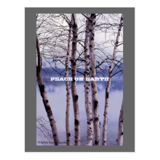 Lake Mac Donald Trees, PEACE ON EARTH Postcards