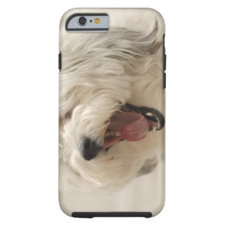 Lake of the Woods, Ontario, Canada Tough iPhone 6 Case