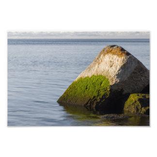 Lake Ontario Shore Photo Print
