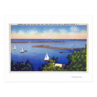 Lake Ontario View Postcard