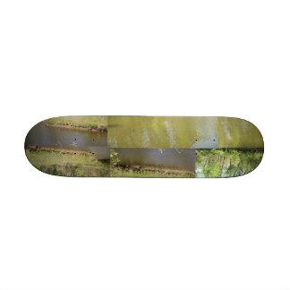 Lake Penny Custom Skate Board
