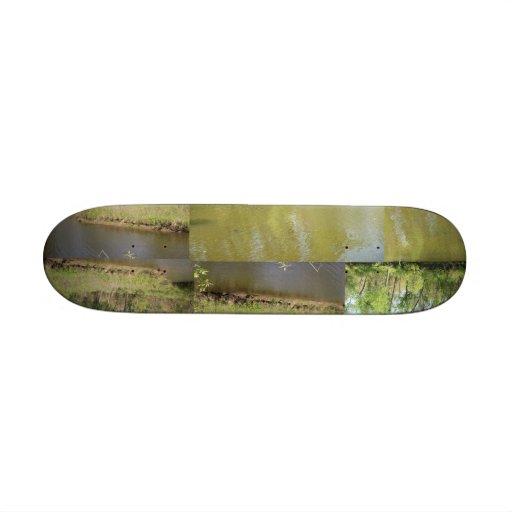 Lake Penny Skate Board