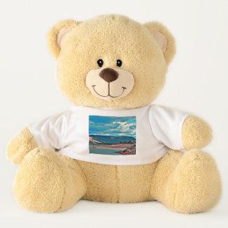 Lake Pleasant Boat Ramp Teddy Bear