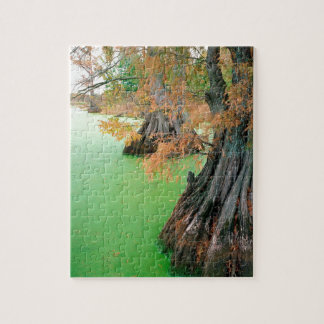 Lake Reelfoot Near Tiptonville Tennessee Jigsaw Puzzle