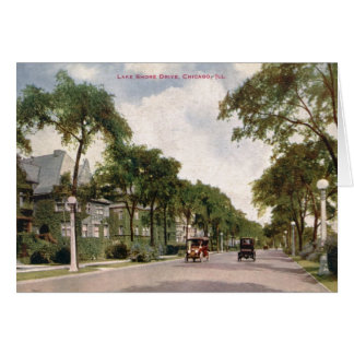 Lake Shore Drive, Chicago 1914 Vintage Card