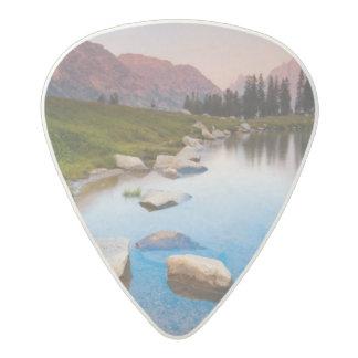 Lake Solitude Acetal Guitar Pick