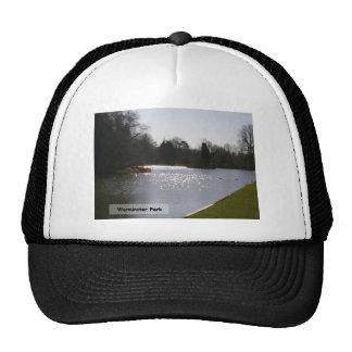 Lake Sparkles Cap