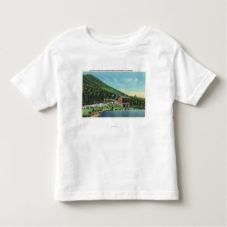 Lake Stevens View of the Toll House Toddler T-Shirt