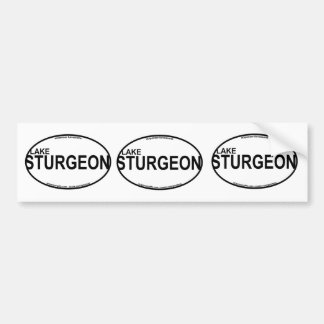 Lake Sturgeon Euro Stickers
