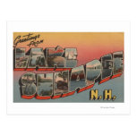 Lake Sunapee, New Hampshire - Large Letter Post Cards