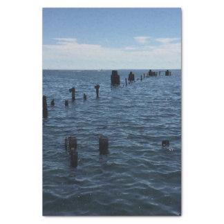 Lake Superior Tissue Paper