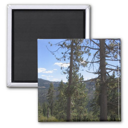 Lake Tahoe Fridge Magnets
