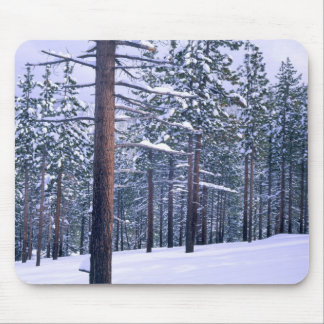 LAKE TAHOE STATE PARK, NEVADA. USA. Fresh snow Mouse Mat