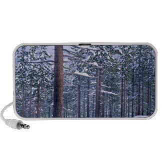 LAKE TAHOE STATE PARK, NEVADA. USA. Fresh snow Portable Speaker