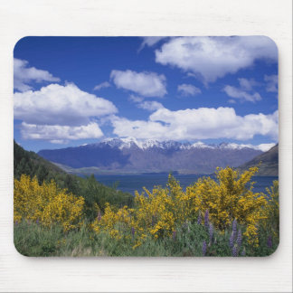 Lake Wakatipu and the Remarkables, Queenstown, Mouse Mat