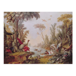 Lake with geese, storks, parrots and herons postcard
