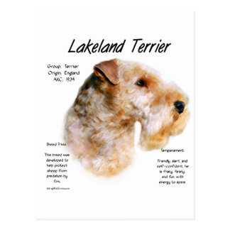 Lakeland Terrier History Design Post Cards