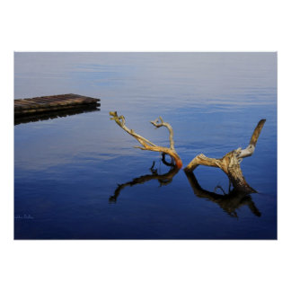 Lake's Edge Abstract Tranquility poster