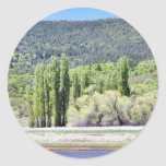 Lakes With Green Trees Marshes Round Stickers