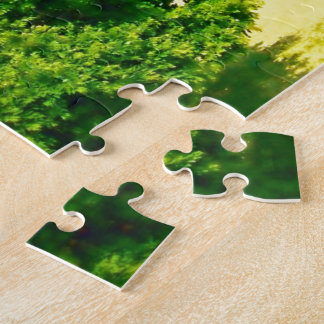 Lakeshores of the Chicago Beach Puzzle
