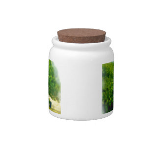 Lakeshores of the Chicago Beach Candy Jar