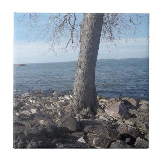 lakeside view tile