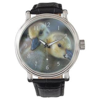 Lakeside Watch