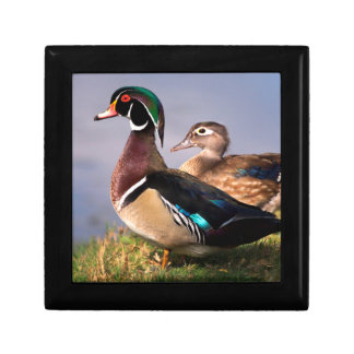 Lakeside, Wood Duck Small Square Gift Box